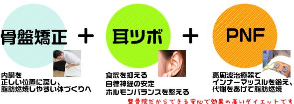 骨盤矯正+耳ツボダイエット+PNFダイエット